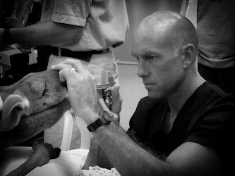 Dr. Brett Beckman Orlando Veterinary Dentistry Specialist
